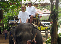 Kok Chang Safari