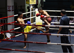 Phuket Boxing Stadium